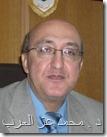 د . محمد عبد المقصود عز العرب