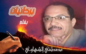 الكاتب الصحفى مصطفى الشهاوى